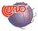 Bravo+logo+copy